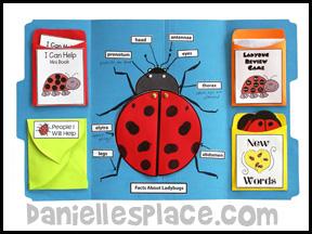 Bug Buddies Studies - Inchworm
