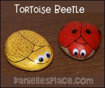 Rock Tortoise Beetles