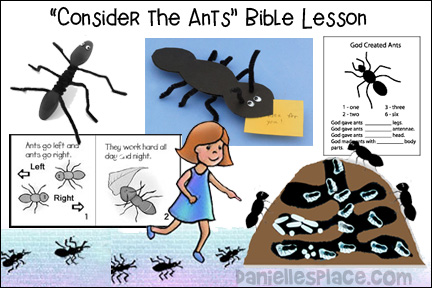 Consider the Ants