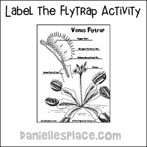 Venus Flytrap Labeling Activity