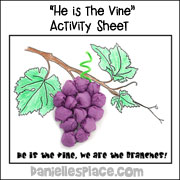 3D Grape Sheet